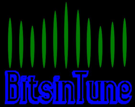BitsinTune Solutions
